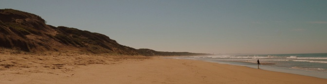 "Ocean Grove ""Not Dog"" beach"
