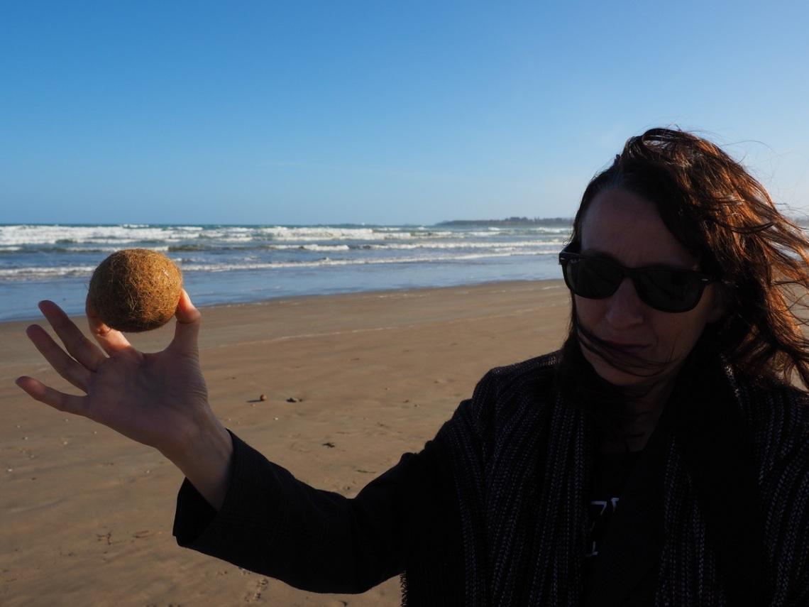 Alien Eggs on Middleton Beach