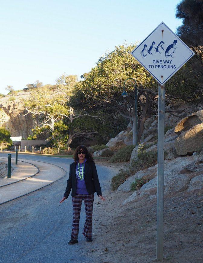 Jenni and her Penguin walk