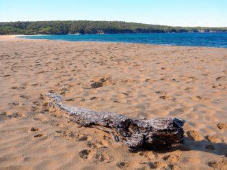 Aislings Beach