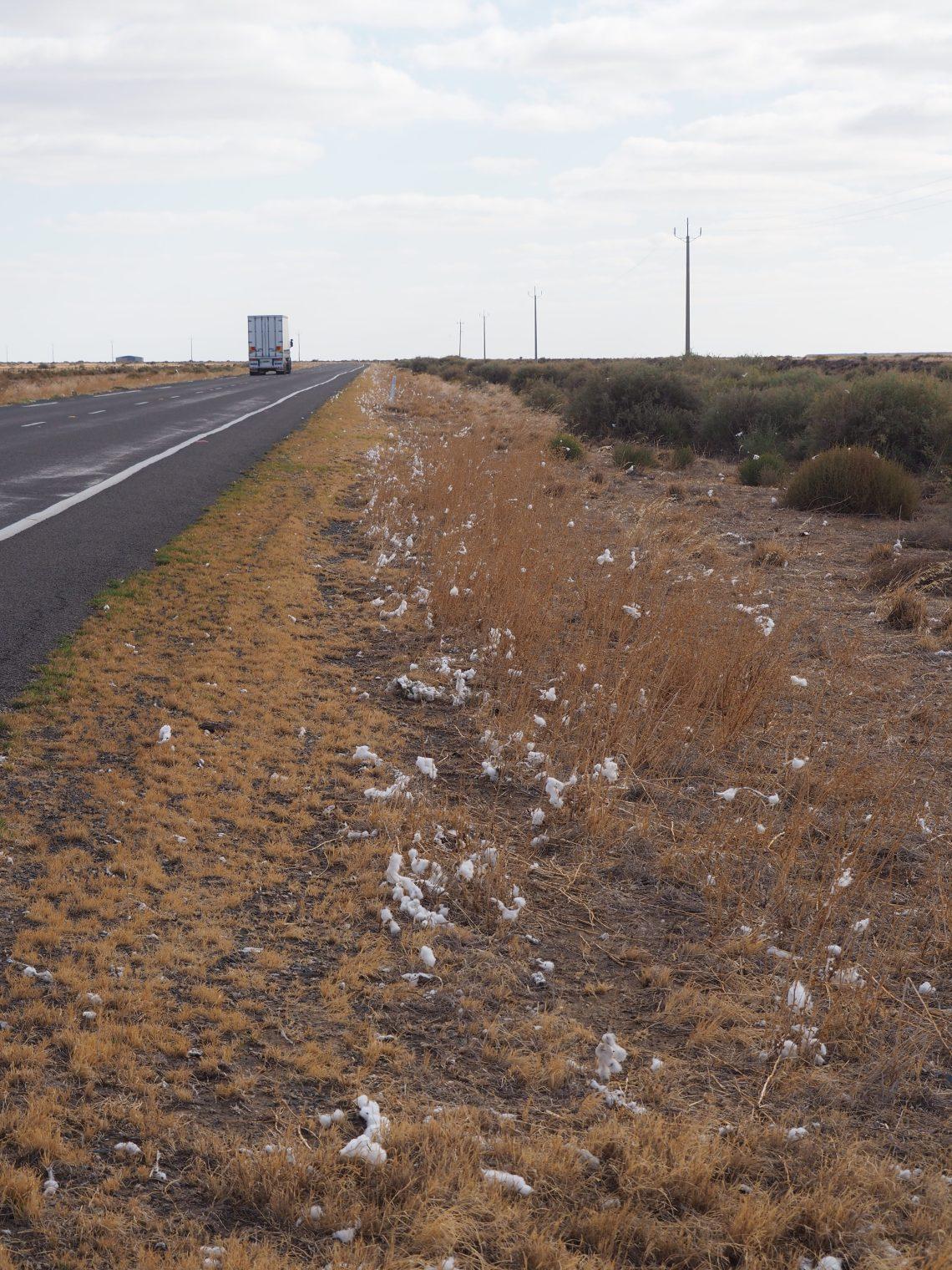 Cotton balls line the road