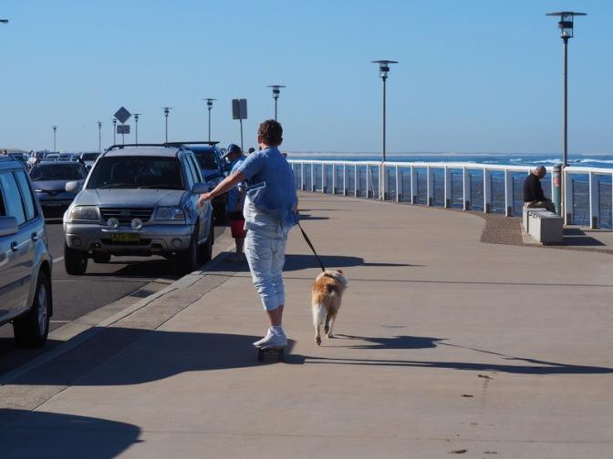 Newcastle Dog Sled