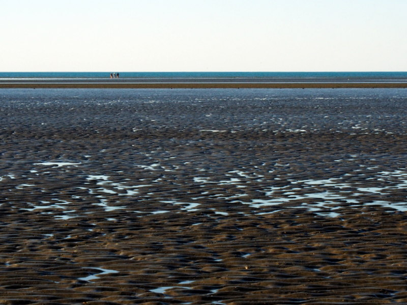Sand flats