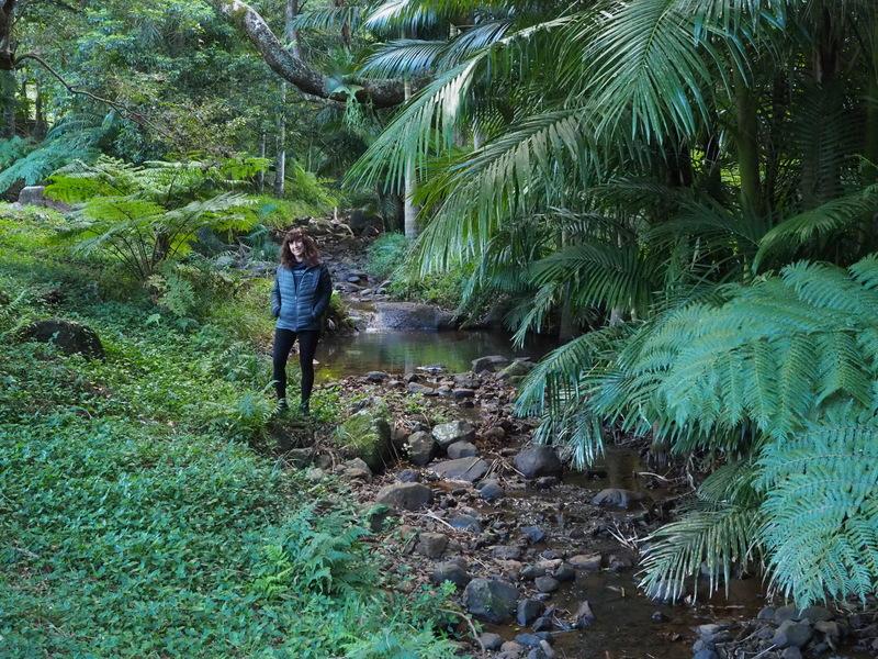 Platypus Creek