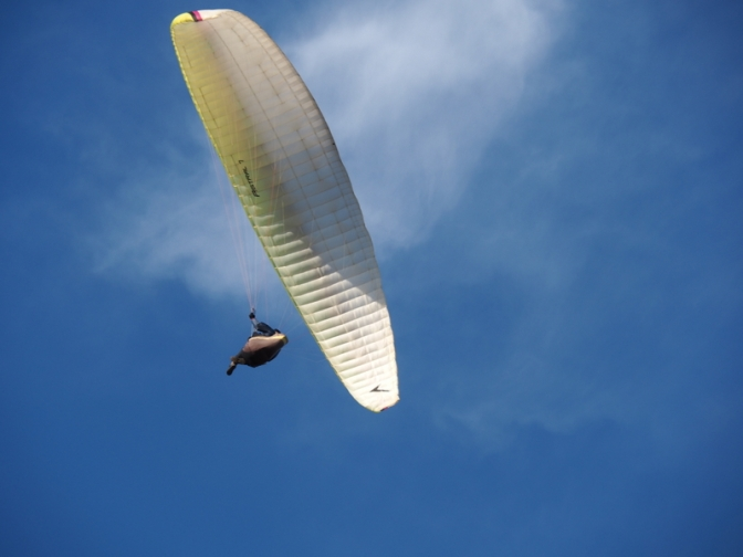 Hang Gliding off Lennox Heads
