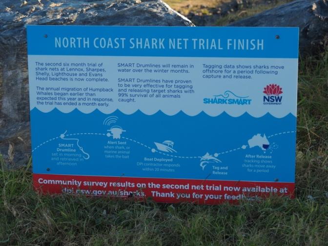 Shark Net Trial