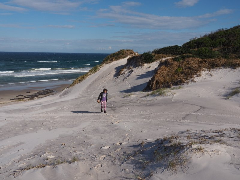Broadwater Beach Sand Dunes