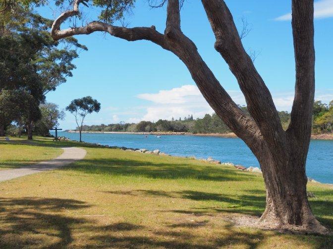 The riverbank parklands