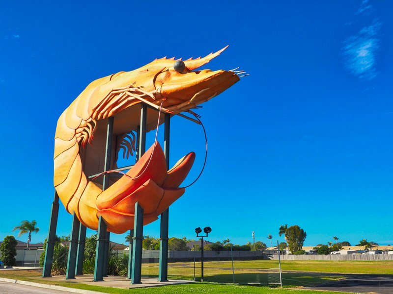 The Big Prawn, Ballina