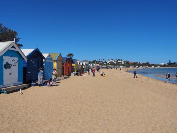 Tourist central at Brighton Beach Huts