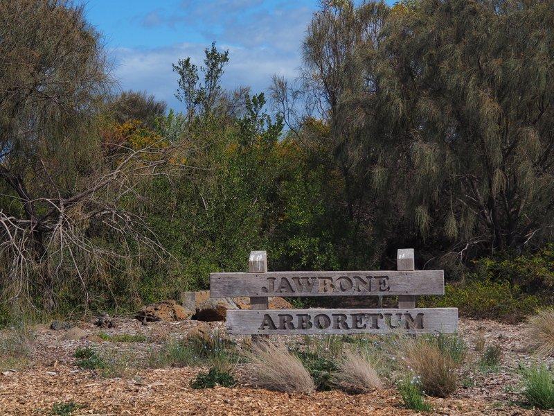 Jawbone Arboretum