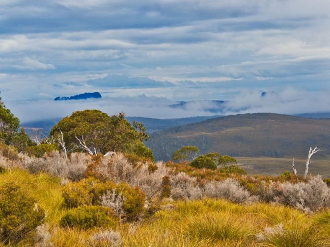 Cradle Mountain in the mist