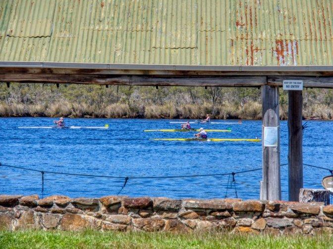 Rowing Race, Franklin